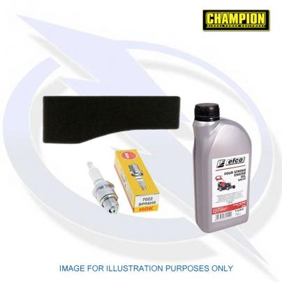 Genuine Service Kit for Champion Generator 73001I-DF